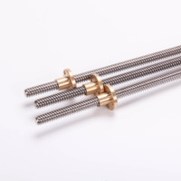 China CNC Brass T8 Trapezoidal Lead Screw