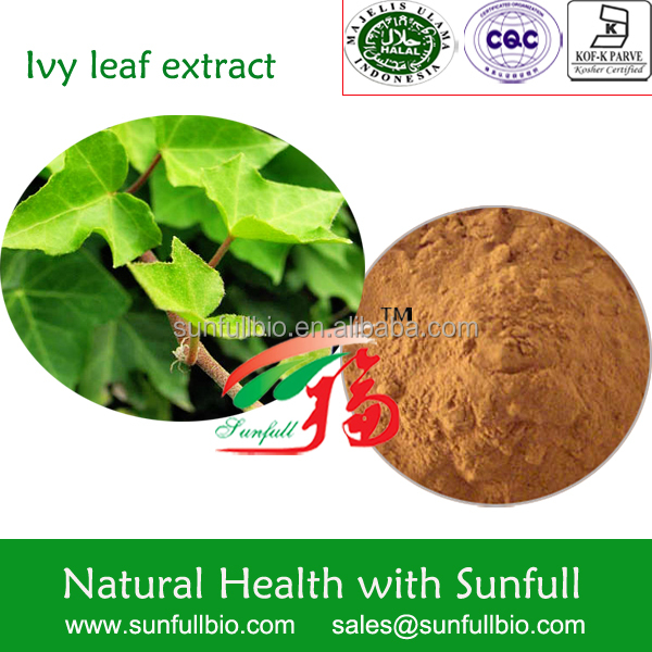 Ivy Leaf - Buy Hedera Nepalensis,Hederacosides,Stem And Leaf Product on  Alibaba com