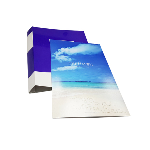 Factory Direct Sell File A4 Box File Pp /Pvc/Pu Paper Folder For Office