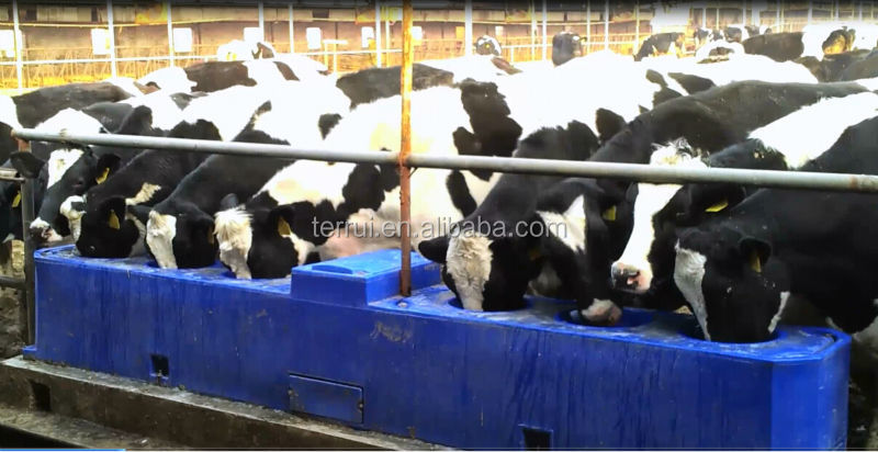 Cattle Drinkers Buy Drinking Tank For Cows Horse Dairy