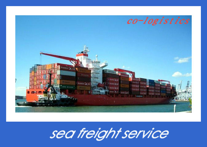 experienced logistics forwarder sea freight to Mumbai India --------Elizabeth
