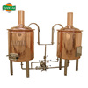 micro brewery system for beer brewing 200L beer equipment