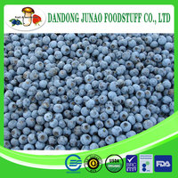 Raw Processing wholesale fruit snacks