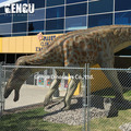 Large dinosaur for shopping mall advertising