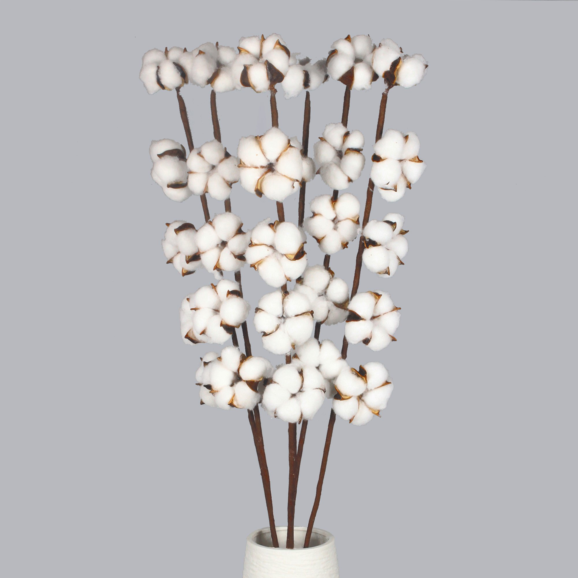 Buy 6 Pack 27 Inch Cotton Stems Farmhouse Decor Rustic Style Vase Filler Floral Decoration Flower Vgia In Cheap Price On Alibaba Com