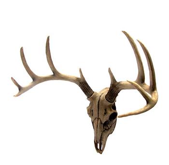 Rack Bust Hunting Cabin Or Lodge Decor Head Wall Mount Resin Deer Antler Buy Lodge Decor Head Wall Mount Resin Deer Antler Resin Deer Antler Candle