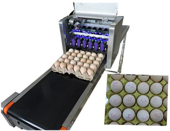 The egg ink-jet printer which can be mixed used by the egg tray making machine