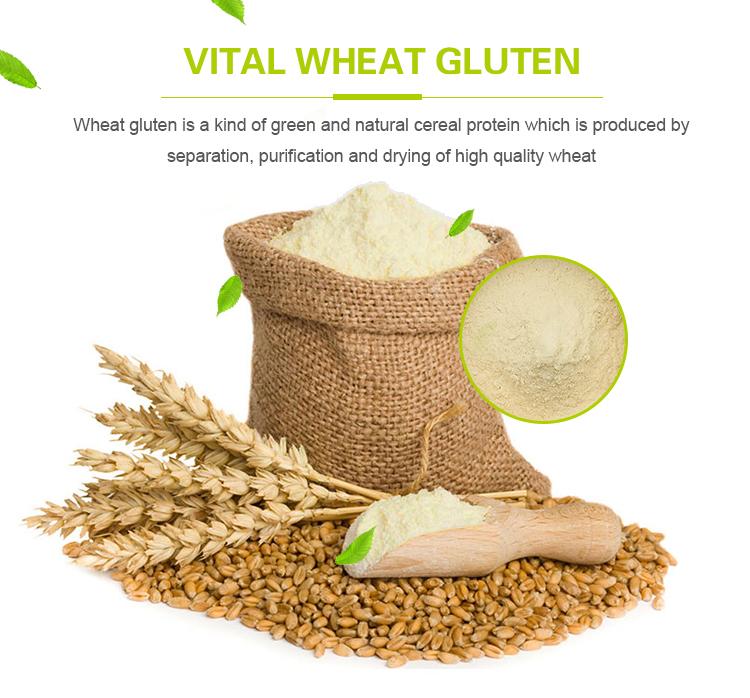 Low Price Sale Vital Wheat Gluten Flour With High Quality - Buy Vital Wheat  Gluten,Vital Wheat Gluten Flour,Wheat Gluten Flour Product on Alibaba com
