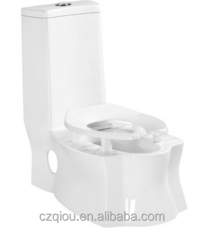 new design Chaozhou double fuction ceramic Washdown S-trap P-trap One Piece Toilet TO2833