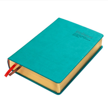Golden edge thick embossed leather year executive planner