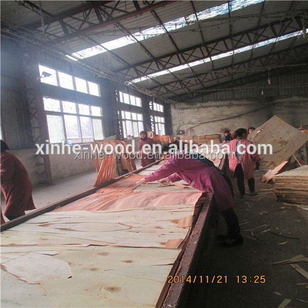 Canada Brown Film Coated Plywood Brown or Black Film Faced Plywood with WBP Glue for Outdoor Building Constrcution etc.