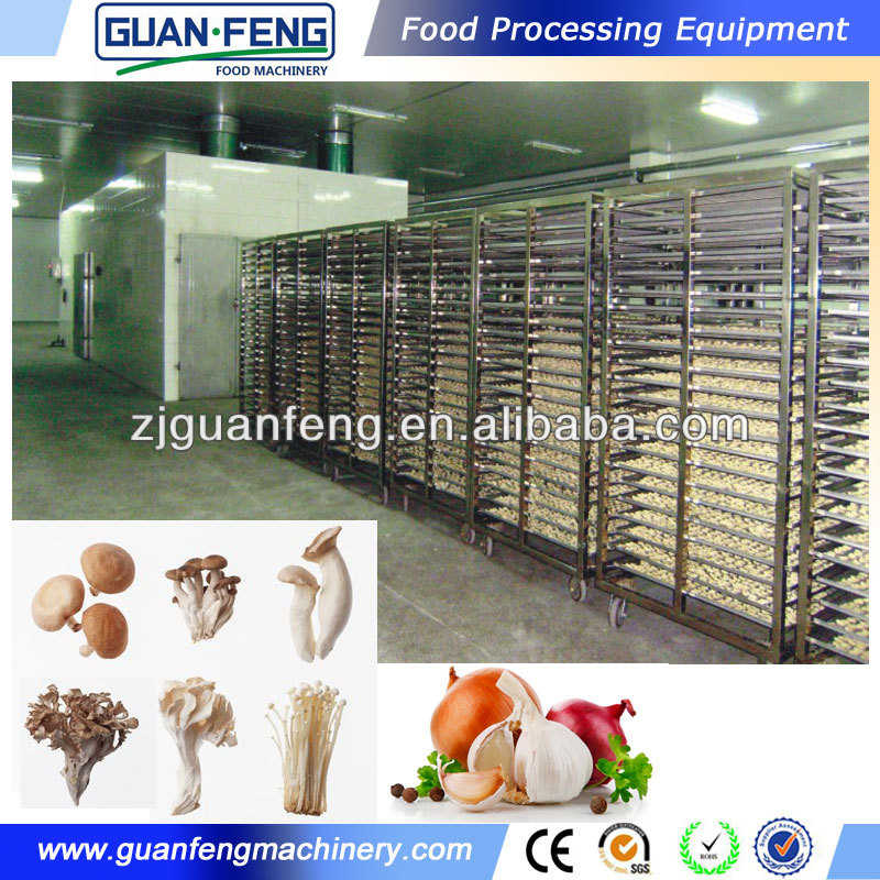 Tunnel Drying Machinery In China Manufacturer Vegetable And Fruit ...