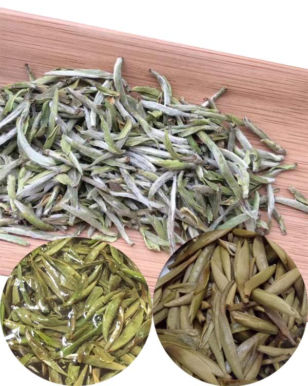 Fujian Import And Export Competitive Price Bai Hao Yin Zhen Sliver Needle Tea Organic In White Tea White Bud Tea - 4uTea | 4uTea.com