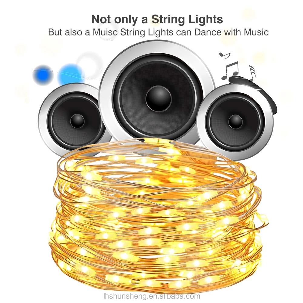 Sheng Music String Lights, 12 Modes 16.4ft 50 LED Battery Operated Twinkle String Lights with Remote Timer for Bedroom Wedding