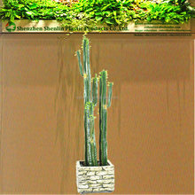 Commercio all'ingrosso tipi <span class=keywords><strong>di</strong></span> plastica in Messico grande succulente <span class=keywords><strong>cactus</strong></span> artificiale palla <span class=keywords><strong>piante</strong></span>