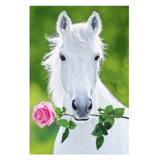 Sale Home Decor: White Horse Hot Sale Home Decor Movie Wall Poster Custom