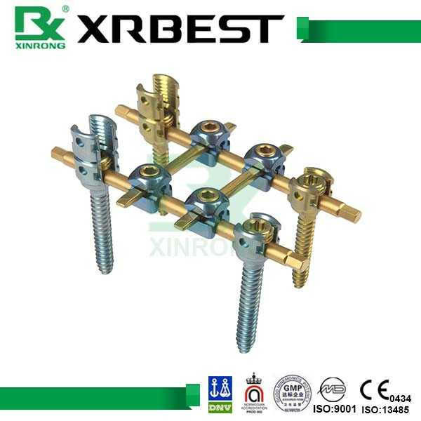 Interior Spinal System Spinal Fixation Device For Stabilizing ...