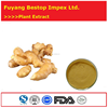 Sheng Jiang China Supplier Pharmaceutical Grade Ginger Extract