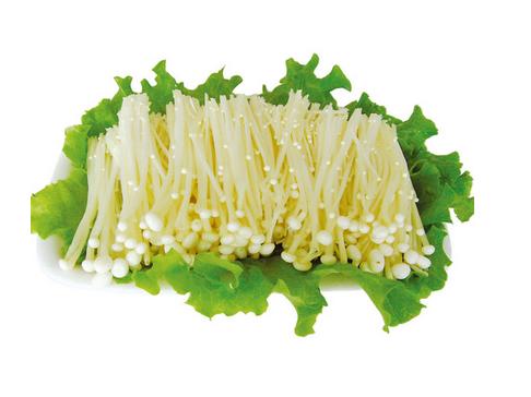 natural Enoki Mushroom Extract Powder Polysaccharide 50%