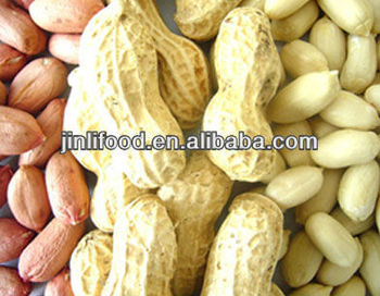 coated peanut organic food wholesale peanuts