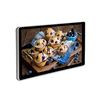 /product-detail/19-wall-mounting-lcd-digital-video-display-vp190a--469517998.html