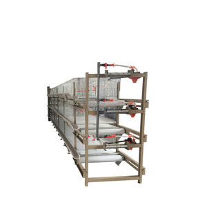Egg layer broiler battery chicken animal cages for for zambia