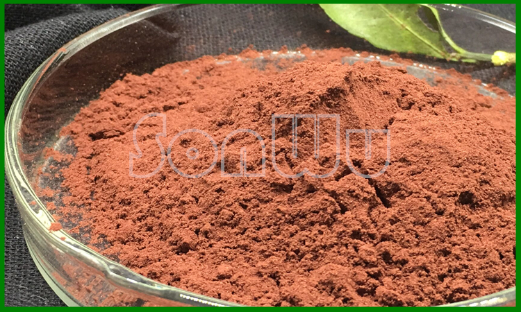 100% natural Grape Seed Extract OPC ( Proanthocyanidins )