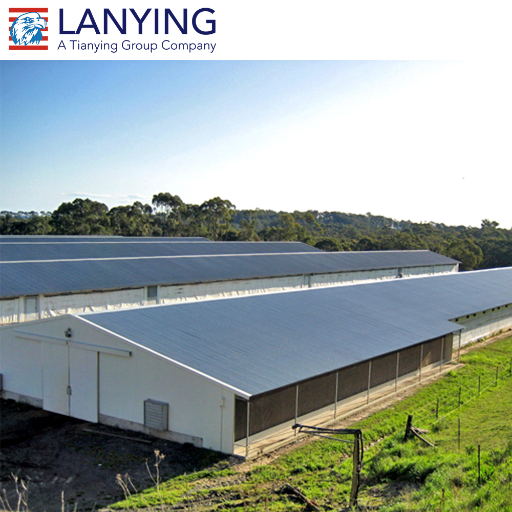 low cost steel structure poultry barn