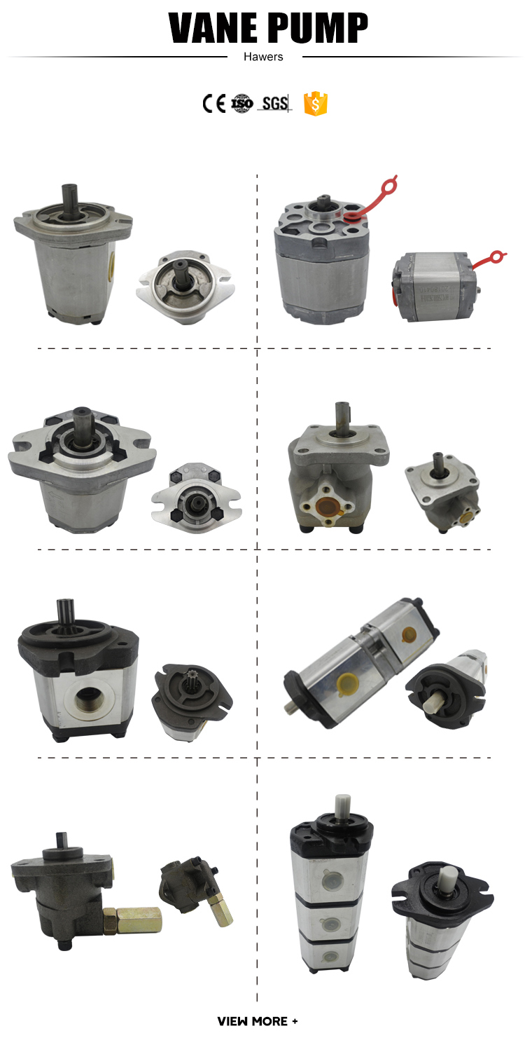 Haweisi  BHP2B0-D series customizable fixed displacement gear pump Hydraulic components