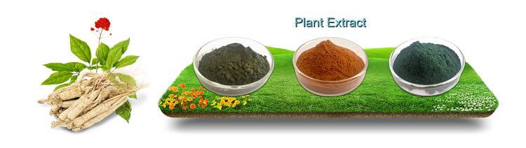 For Skin Food Grade USDA Bulk Extract 100% Pure Organic Blue Spirulina Powder