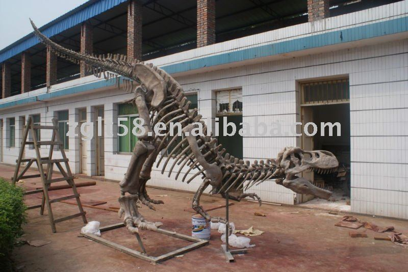 Dinosaur Museum Equipment- T-rex bone