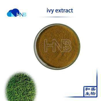 Hnb Supply Chinese Ivy / Ivy Extract / Hedera Helix Extract Powder - Buy  Chinese Ivy,Ivy Extract,Hedera Helix Extract Product on Alibaba com