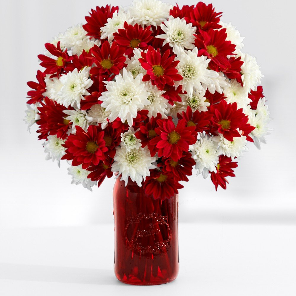 ProFlowers - 18 Count Multi-Colored 100 Blooms of Christmas Poms w/Free Clear Vase - Flowers Mothers Day