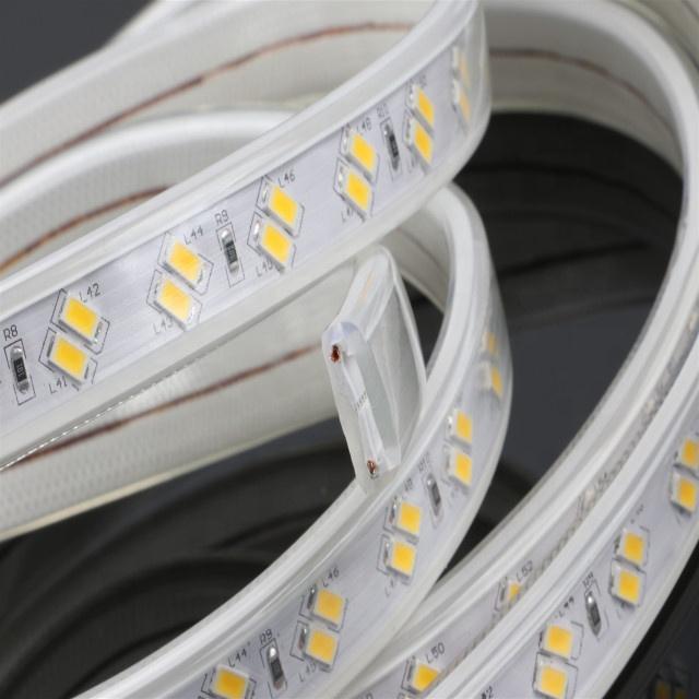 Double Raw  220V High voltage led 5730 120LEDs flexible strip light Power plug Promotion Price led light