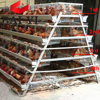 Poultry Supplies Online Wholesale Layer Chicken Cage For Rearing House