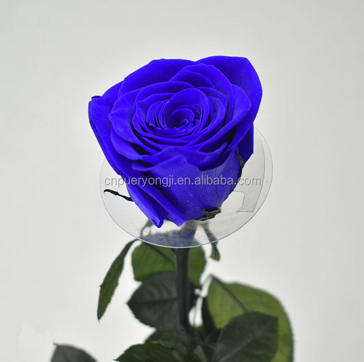 Wholesale Boxes Type Artificial Preserved Roses Colorful Flowers ...