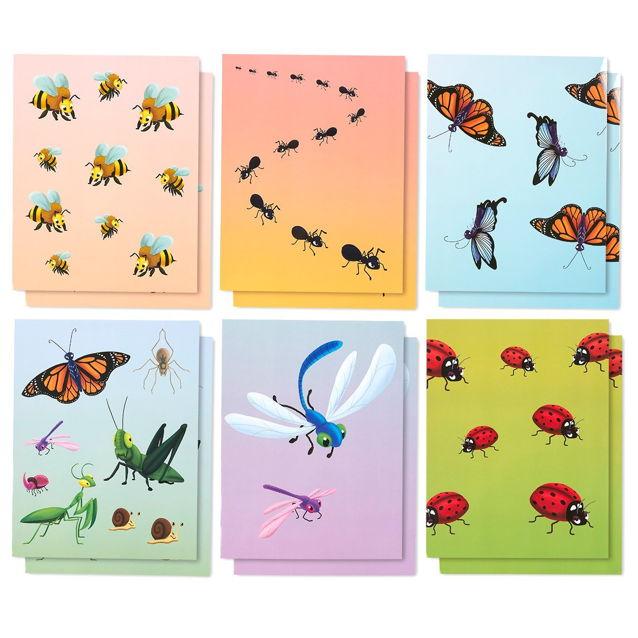 Get Quotations Two Pocket Folders Bulk 12 Pack Letter Size File 6 Insect Designs