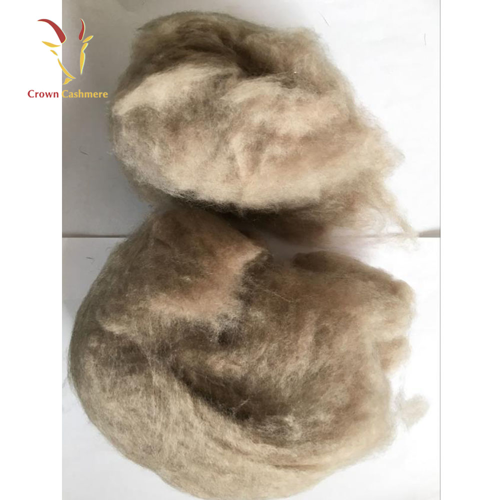 Raw Cashmere Wool Fiber Sheep Wool For Sale