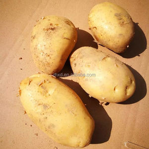 new crop fresh organic russet potatoes on sale