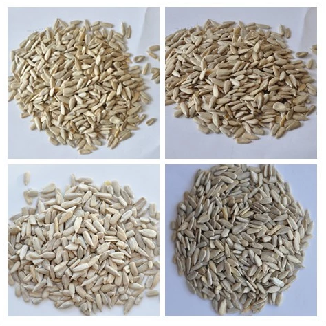 Confectionery sunflower seeds kernels