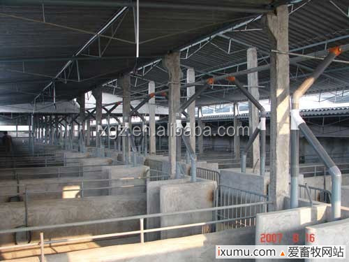 modern low price high quality pig farm house