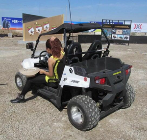 250cc kinroad buggy parts electric beach buggy