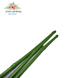 Top Quality New Fashion Plant Support Stick