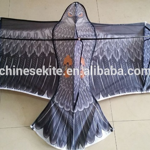 Triditional eagle kite