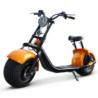 SC10 DOGEBOS CITYCOCO 1000w 60v12ah 2000w e-mark approved electric scooter with CE approved