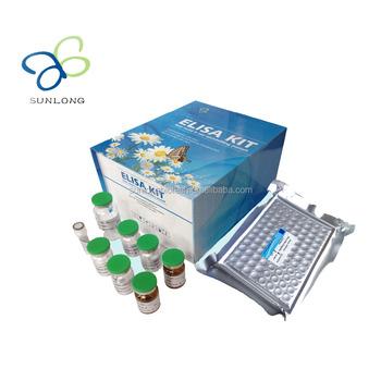 Tikus Super Oksidase Dimutase Sod Elisa Kit Buy Sod Elisa Kit