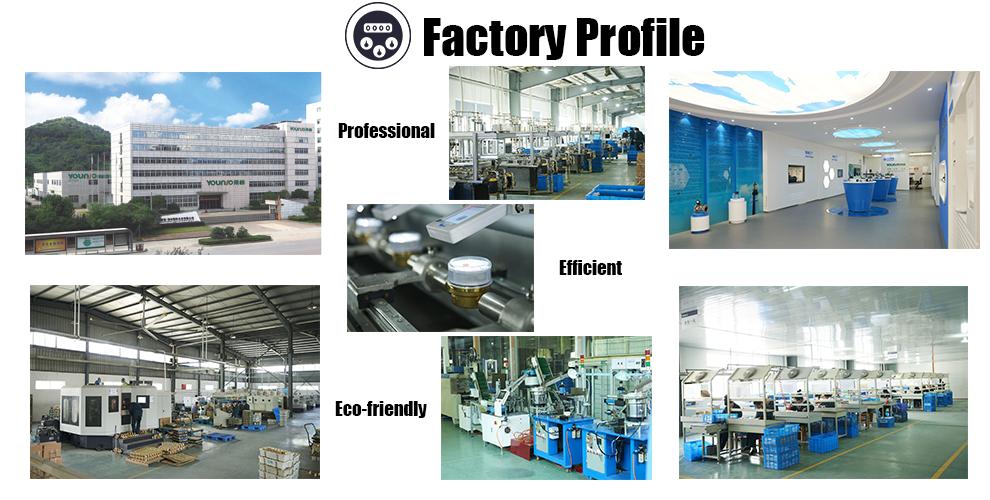 company profile.png