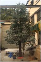 Big indoor and outdoor artificial scotch pine tree