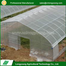 Professional Agricultural Reinforced Commercial Plastic Greenhouses With ISO 9001 Certification