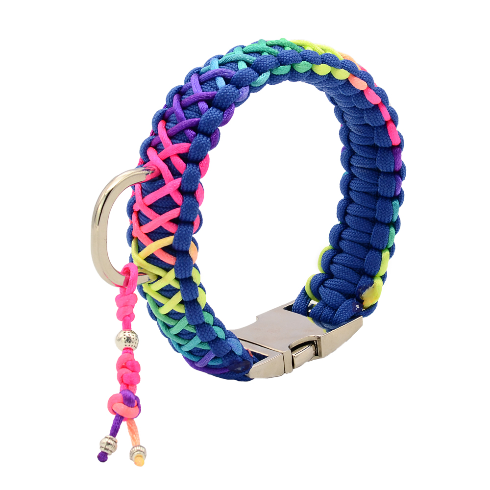 Deluxe Rainbow King Cobra Paracord Pet Dog Collar and Lead with Silver Charms